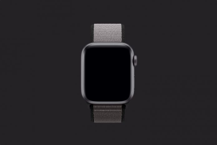 Apple Watch Sport Loop (40mm) - Anchor Gray
